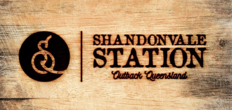 Shandonvale Station logo_FIN